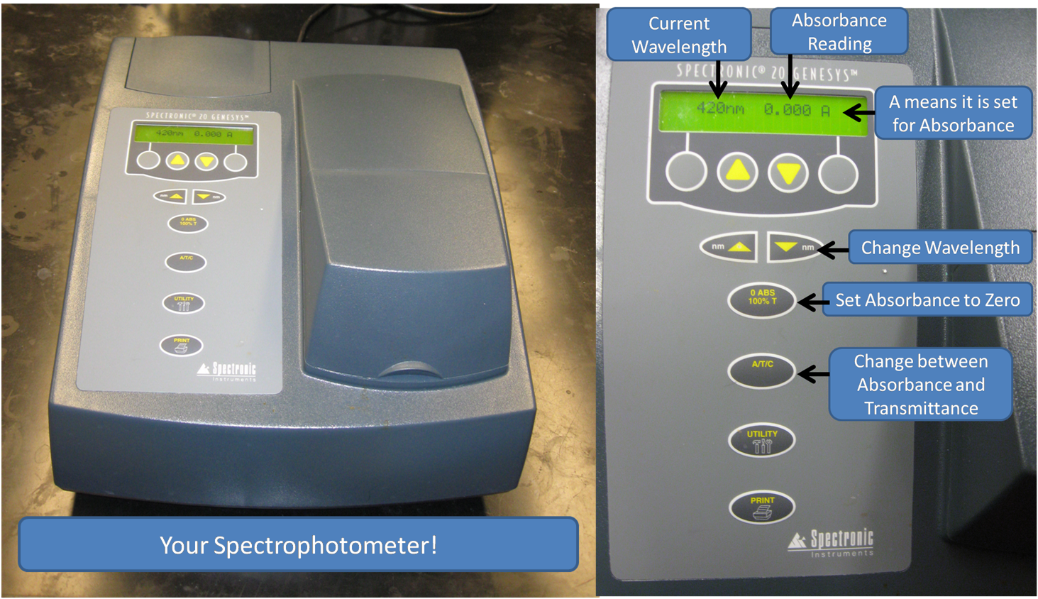 Use spectrophotometer a how to
