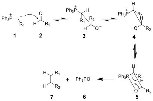 Ring closure metathesis mechanism