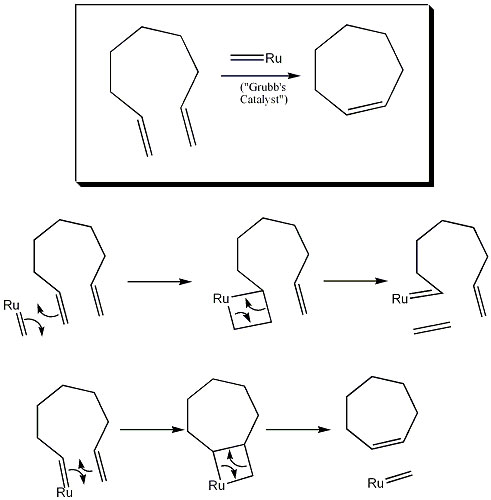Membered Ring Closing Metathesis