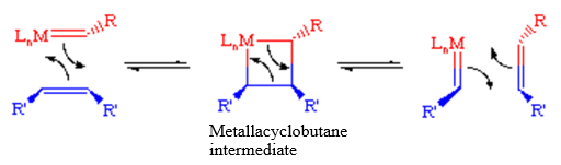 rcm metathesis mechanism Acid- and photo-activated ruthenium metathesis catalysts closing metathesis (rcm) were able to gain additional insight into the activation mechanism through the.