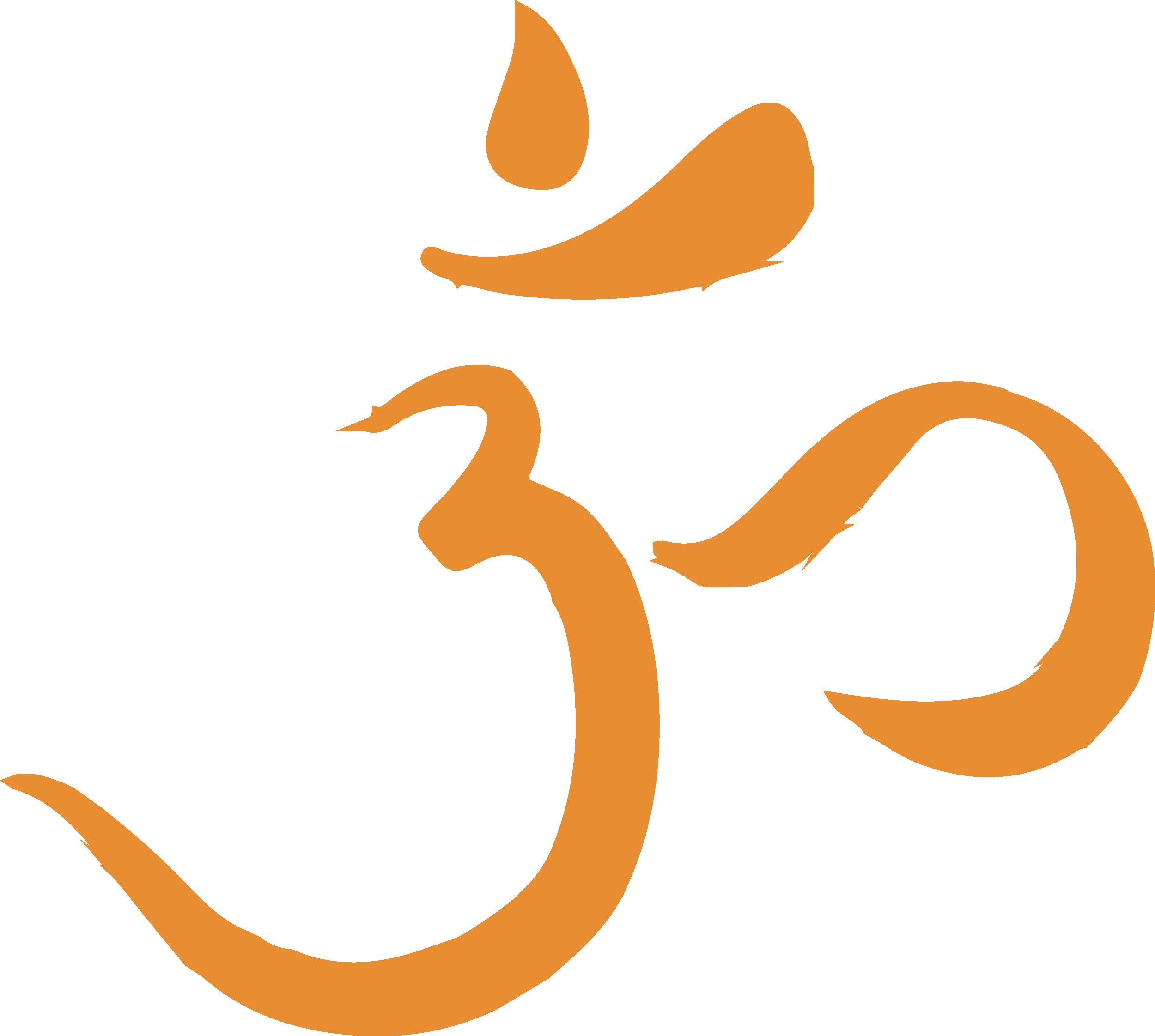 Hindu Students Council University Of Michigan
